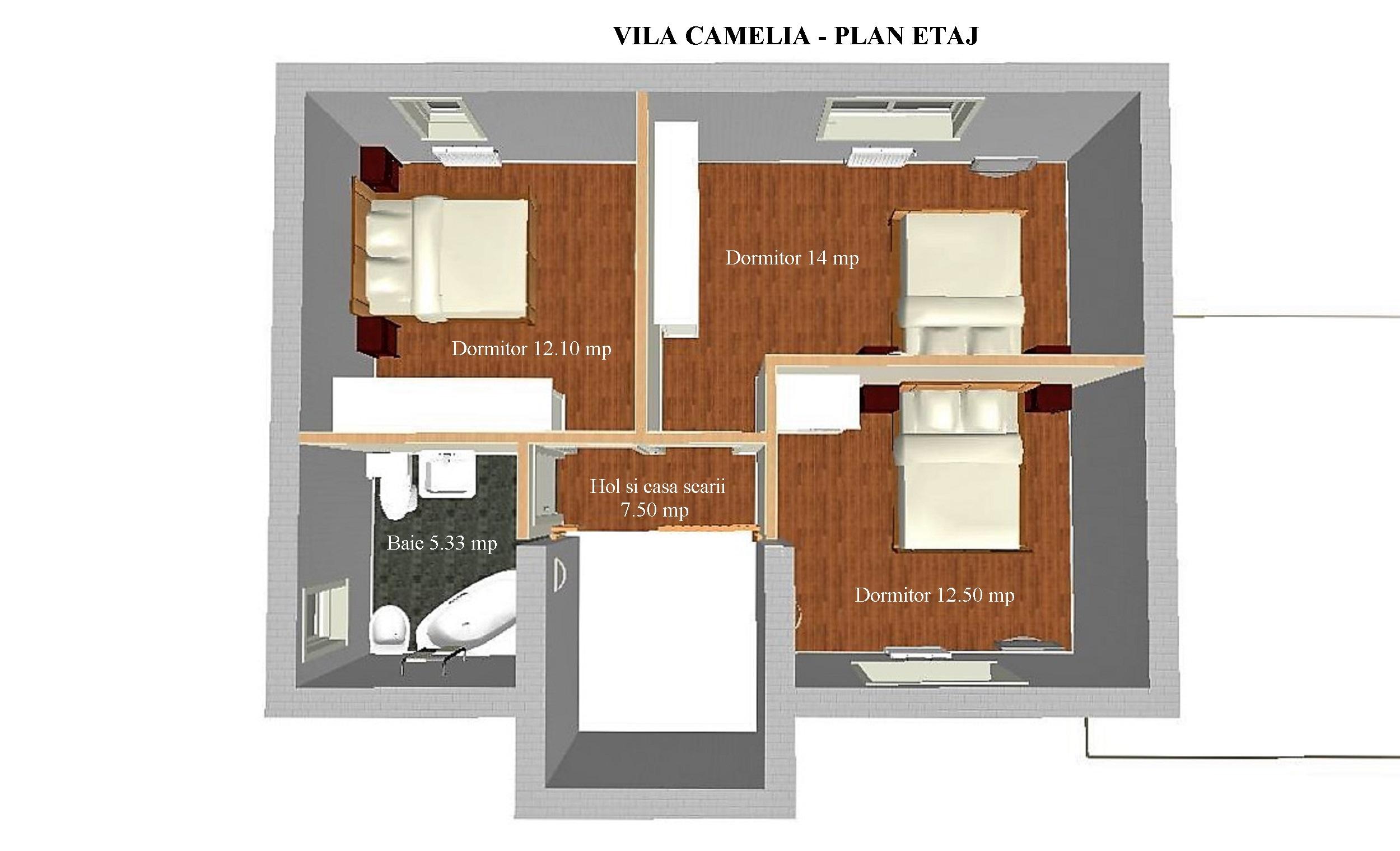 plan-etaj-camelia-nou